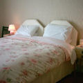 Chester hotels - Shenley Lodge Guest House