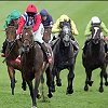 find hotels close to horse racing courses