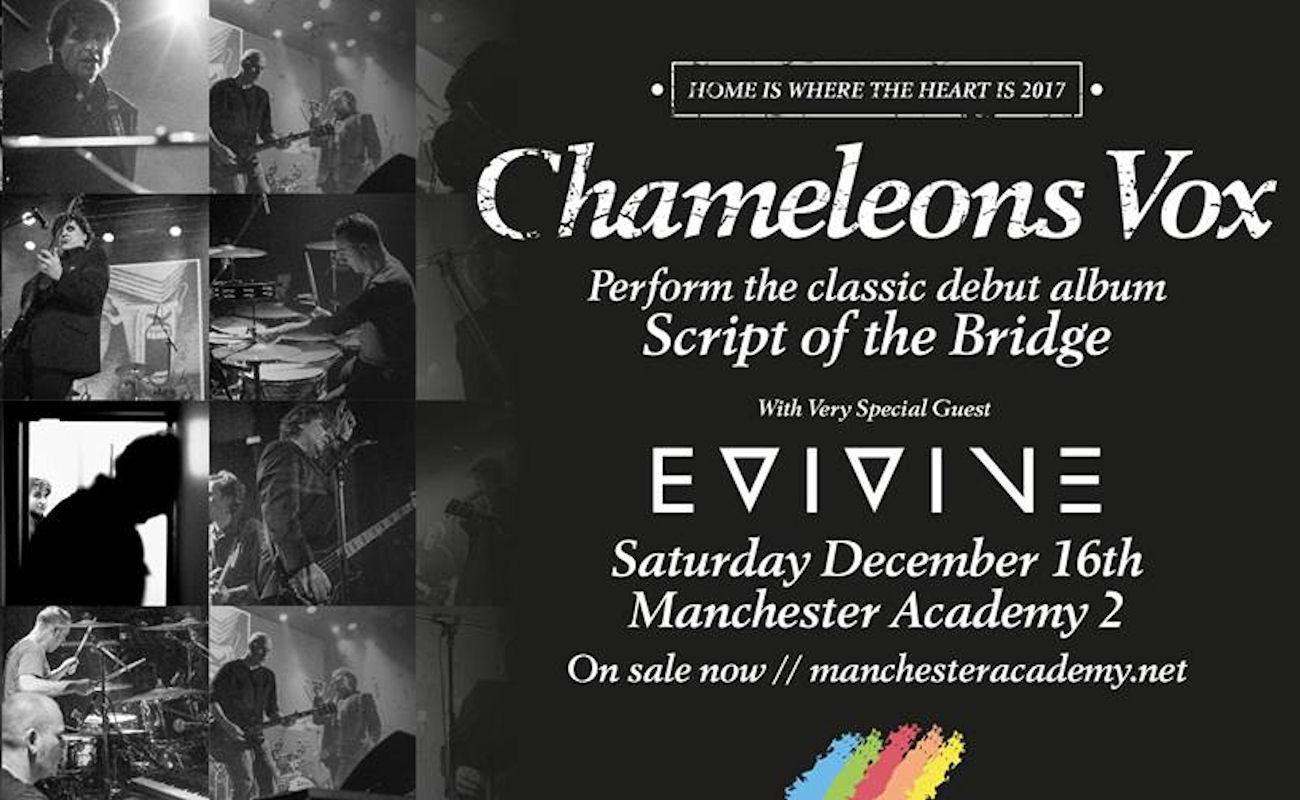 Chameleons live Manchester